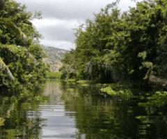 Au cœur de la réserve naturelle