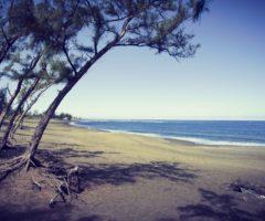 Un Océan de sommets – 8 jours