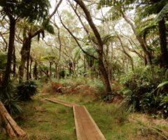 Slow trekking – 8 jours